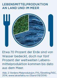 Norwegischer Lachs - Lebensmittelproduktion