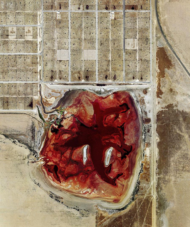 Rindermast: Umweltverschmutzung wird Kunst
