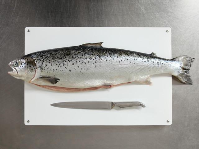 Lachs - eine überbewertete Speise? (c) Deutsche See Fischmanufaktur