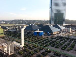 Rooftop-Garten auf dem Dach des Eldorado Shopping Centers