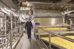 Joint Venture: erste Pommes-Fabrik für Russland