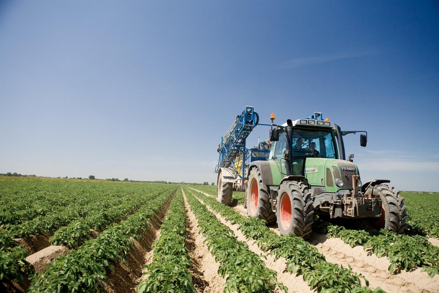 Lamb Weston - Die Reise der Kartoffeln - Landwirtschaft