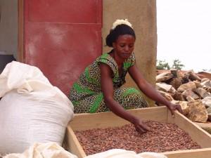 Original Beans - Eine Tafel - Ein Baum. Nachhaltigkeit in der Schokoladenproduktion.